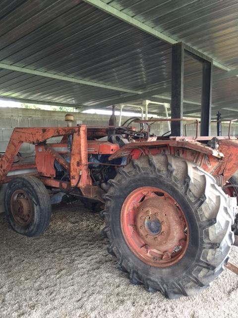 trattore Same Ariete 80 dt con Caricatore Frontale